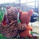 Mr. Bear